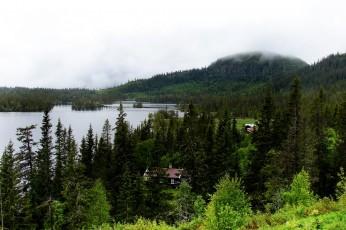 zd 6 - Norwegia